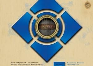 DM Blue Steel Acoustic Organic AS